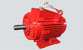 Delta Electro Power Electric Motors Pumps Solutions